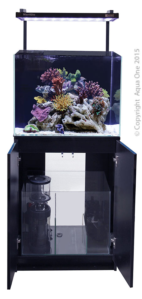 Minireef 120 marine set 120l redwood aquatics for Aquarium 120l