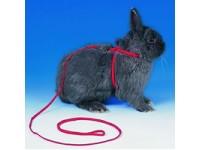 Animal Harnesses
