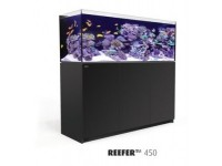 Red Sea Reefer Series